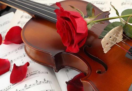 musica e animazione matrimonio marche